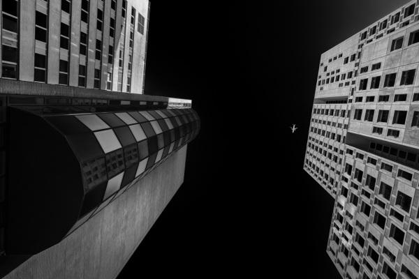 Rotterdam z/w