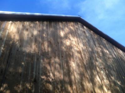 barn siding, board & batten, native poplar rough siding, green construction, wood building material