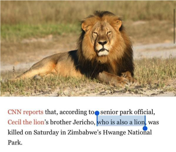 Just in case anthropomorphism's gone too far and you forgot lions have lions as brothers.