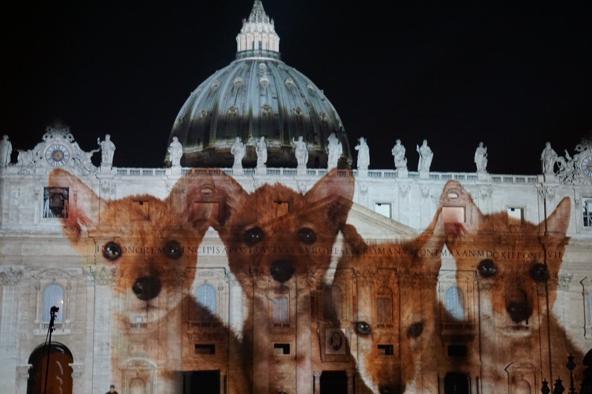 vatican jubilee