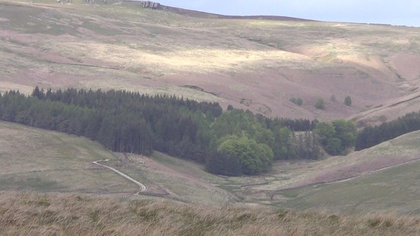 View across the Forest of Bowland from Merrybent Hill