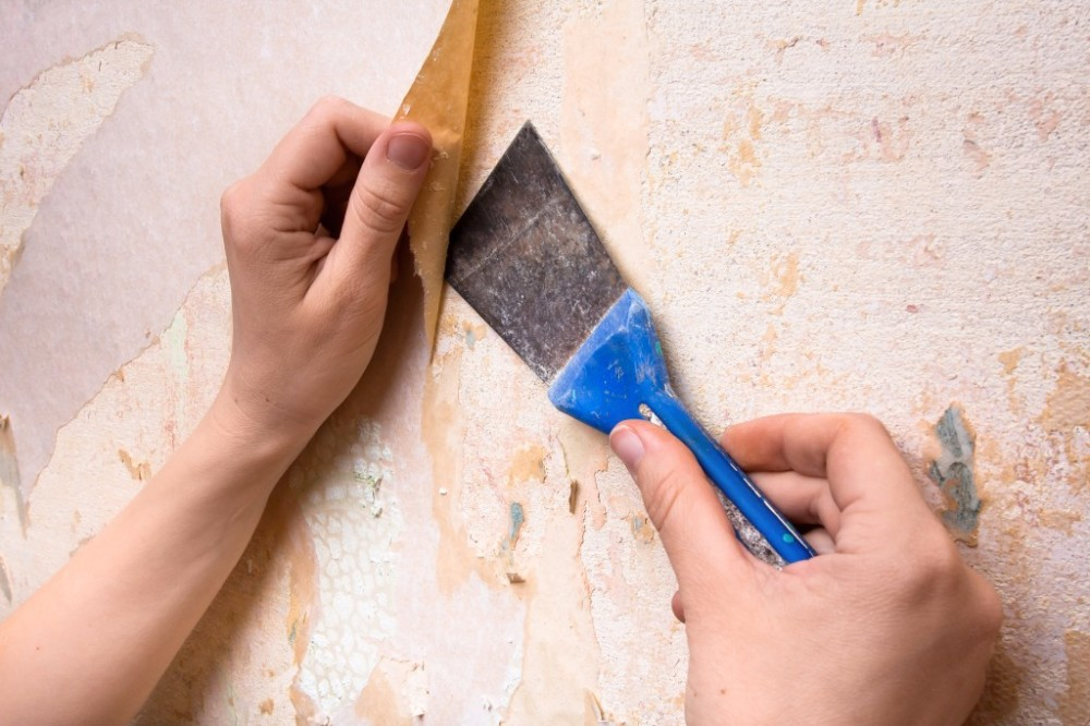 Wall Paper Removal Services Berthoud