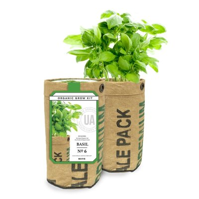 BASIL GROW KIT - $16.95