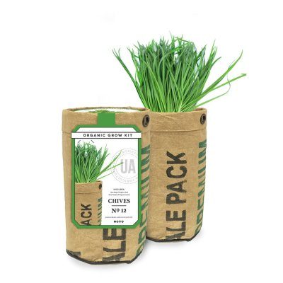 CHIVES GROW KIT - $16.95
