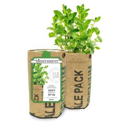 MINT GROW KIT - $14.95