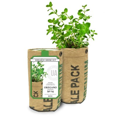 OREGANO GROW KIT - $14.95