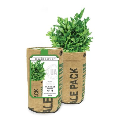 PARSLEY GROW KIT - $14.95