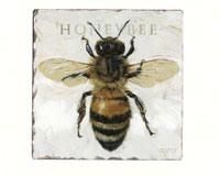 BEE COASTERS - $12.95