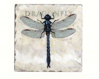 DRAGONFLY COASTERS - $12.95