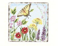 BUTTERFLY COASTER SET - $9.95