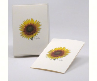 SUNFLOWER NOTECARD SET - $10.95