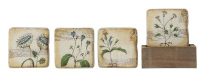WILDFLOWER COASTER SET - $16.95