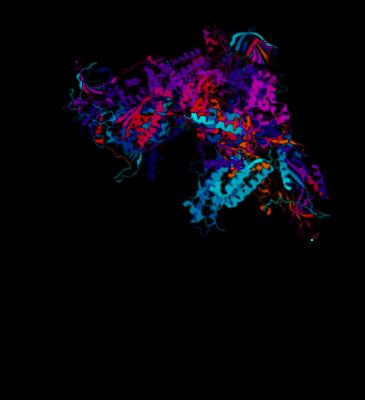 Polymerase MRI