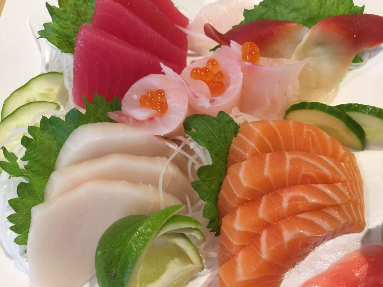 Sashimi Regular