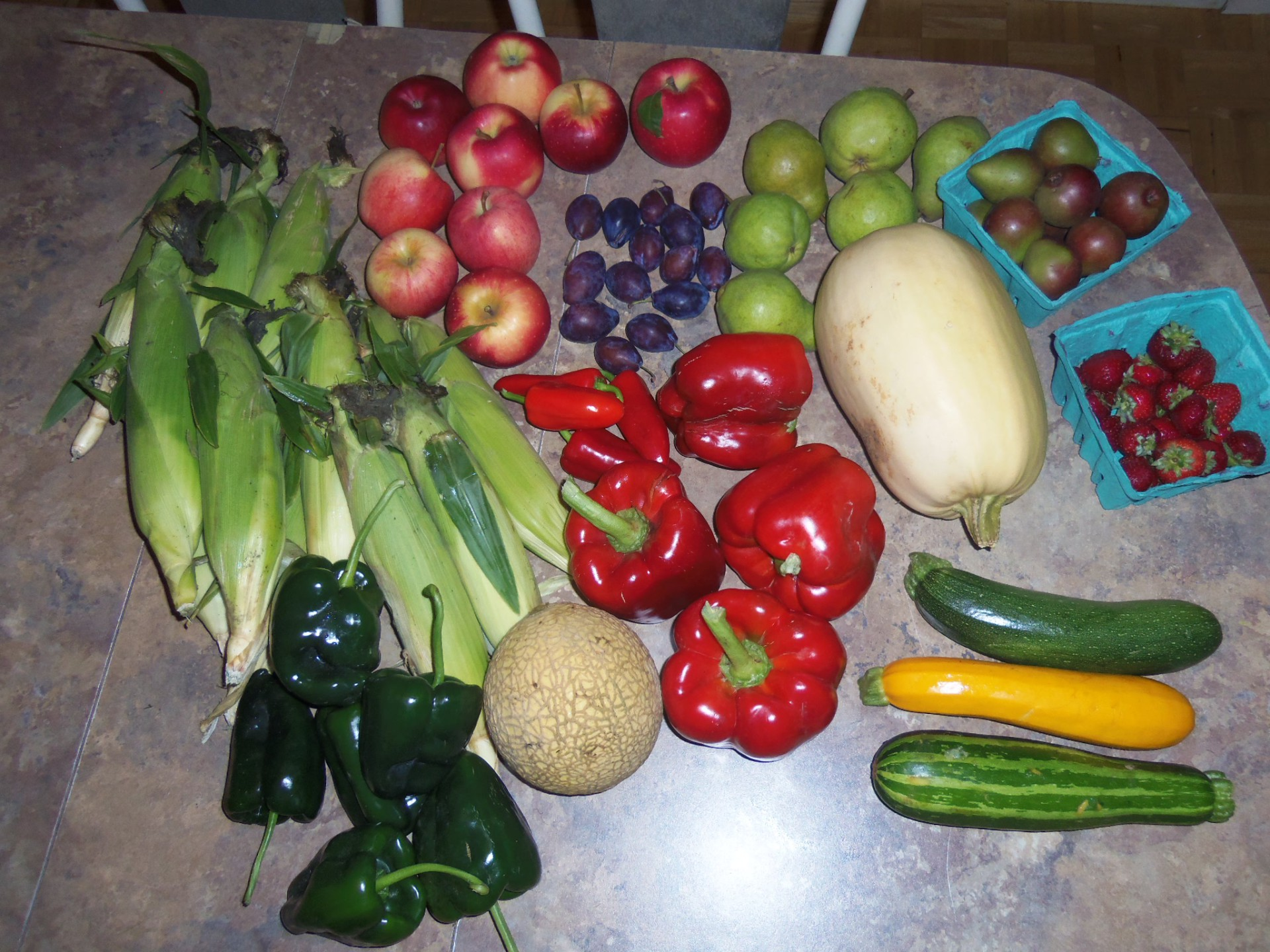 What on earth is a CSA???