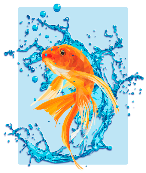 The Gold Fish/Geometric Illustration Technique