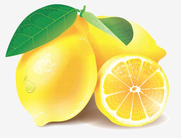 Lemons/Vector Illustration