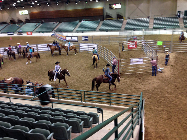 Barrel Racing in Reno!