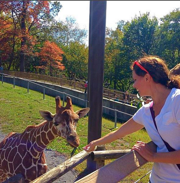 Feeding giraffes at the Baltimore Zoo