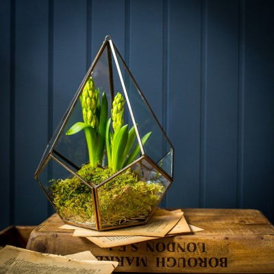 Pentagon Brass Glasshouse Candle Holder - Large £40