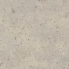 Fossil Limestone