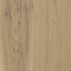 Canopy Oak