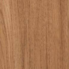 Smoothbark Hickory