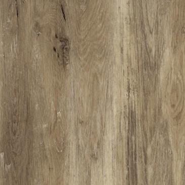 Worn Oak