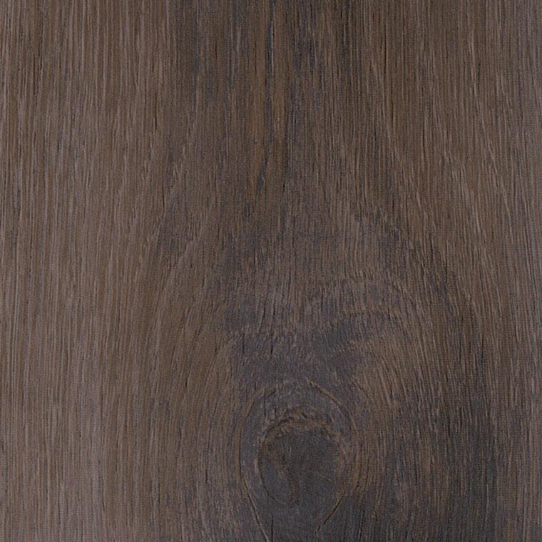 Sanctuary Pine