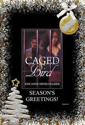 Caged Bird Christmas Gift Orders!