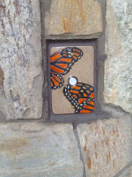 doorbell, door bell, peacock, feather, doorbell plate, buzzer, butterfly, chicken, moth, stoneware, stoneleaf, stoneleaftile, tile, mosaics