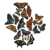 butterfly, moth, tile, butterfly tile leaf tile, monarch, luna moth,