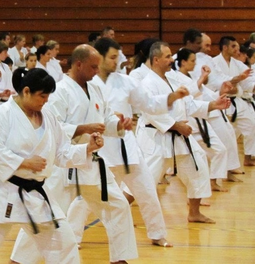 Adult Karate instruction