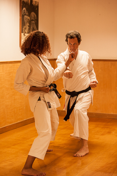 Adult Karate instruction
