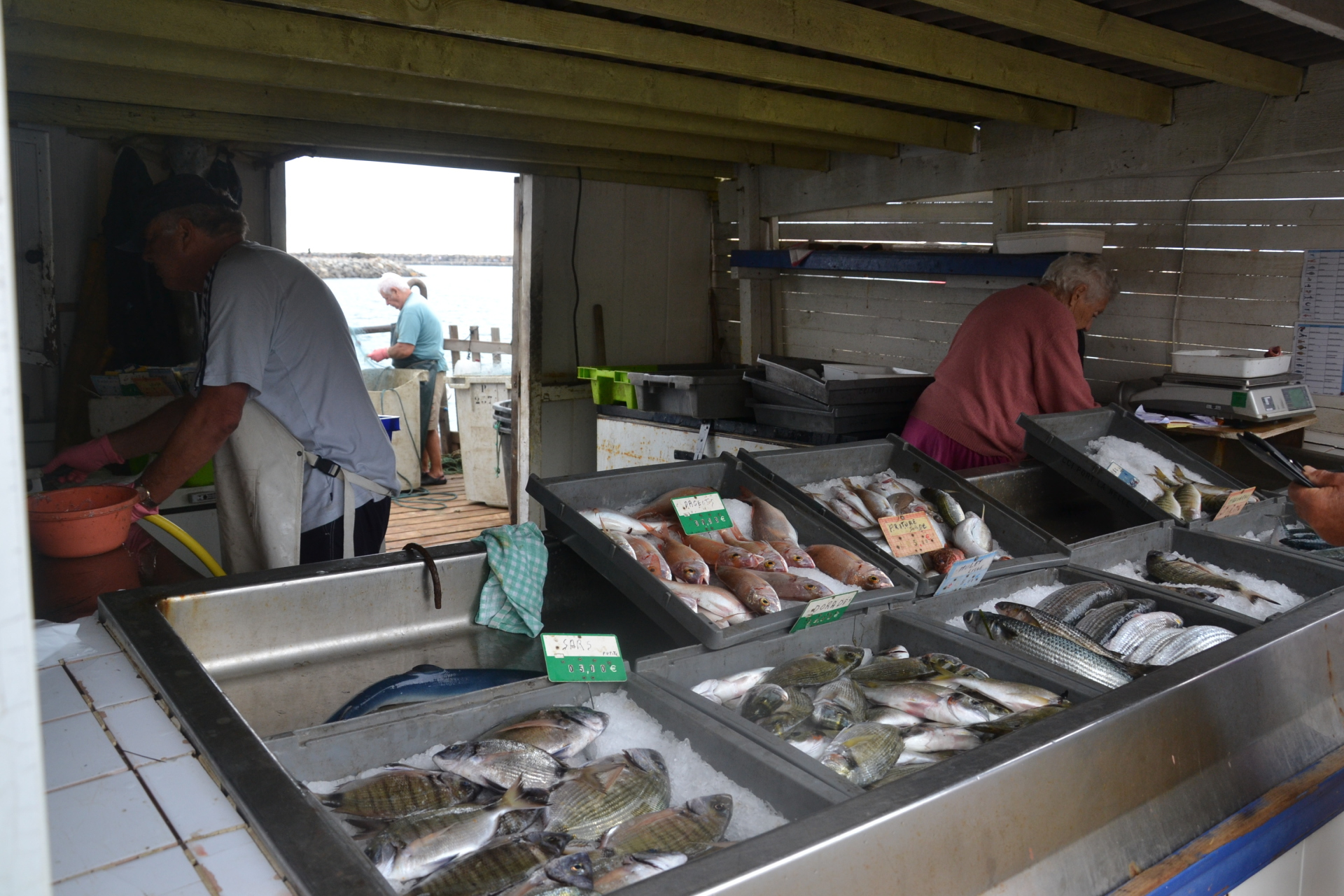 Fresh Fish Monger