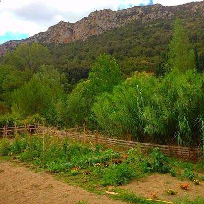 Garden of Paridise