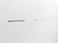 The Death of Laoshe;art;installation;2017;wujiaru