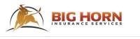 brunoxdesigns, website design mn, insurance