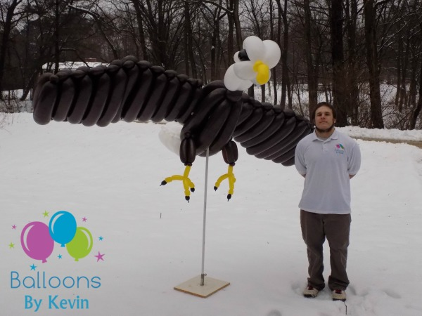 "9' 10"" Wingpsan Eagle"
