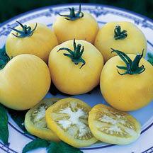 Heirloom Garden Peach