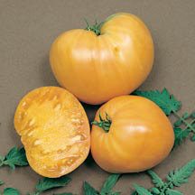Heirloom Oxheart Orange