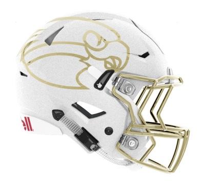 2017 Helmet Design
