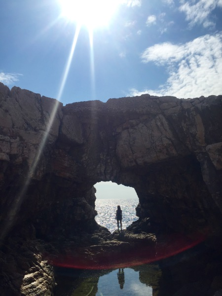 cove climb