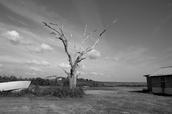 Boat-Tree-Levee-House