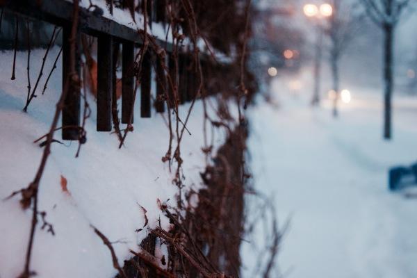 Snow Storm in Saint Paul