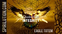 Eagle Totem - Animal Spirit Guide - Inner Eagle Powers & Wisdom