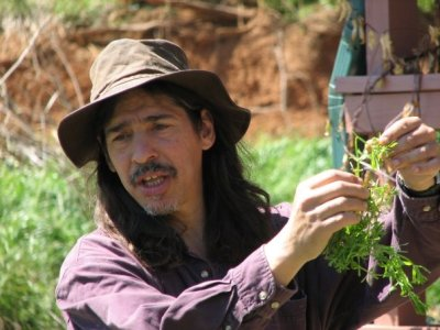 HAALo Presents 3 Days of Herbal Medicine with 7Song