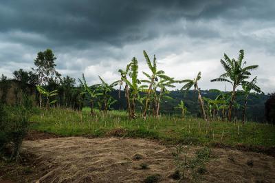 Rwanda, Kibeho. Outside the village.