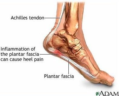 """<img alt=""""achilles tendon"""">"""