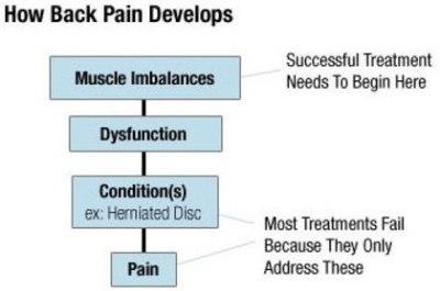 "<img alt=""how back pain develops"">"